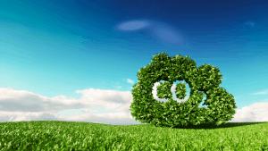 környezetvédelem napelem